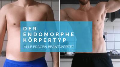 der endomorphe koerpertyp